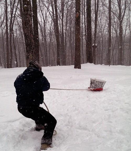 Heavy sled dragging